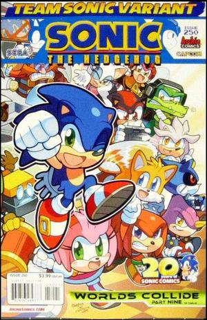 Sonic The Hedgehog No 250 Variant Team Sonic Cover Ryan Jampole Archie Comics Back Issues G Mart Comics